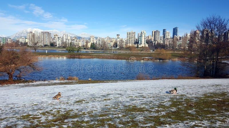 Landschap de winter Vancouver van het de Bouwpark stock afbeeldingen