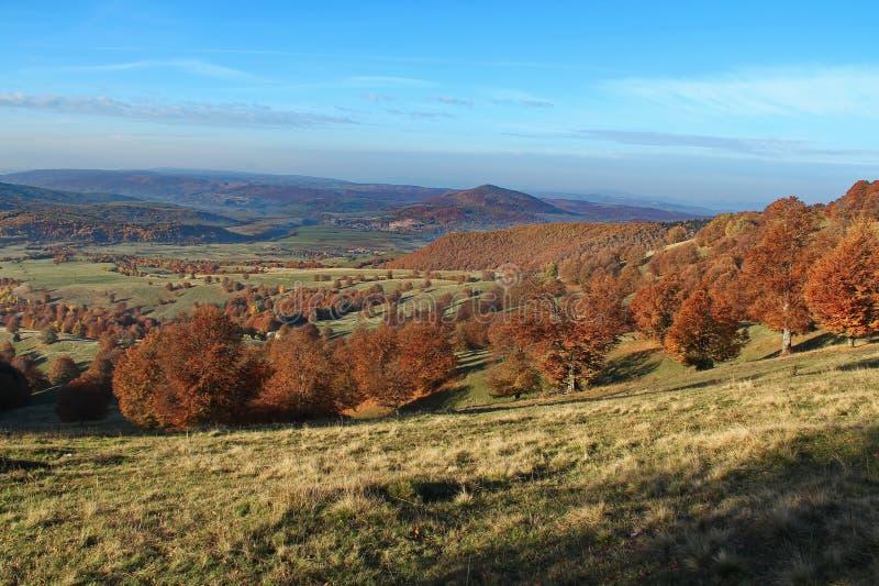 Landschap dichtbij Heilige Anna Lake royalty-vrije stock fotografie