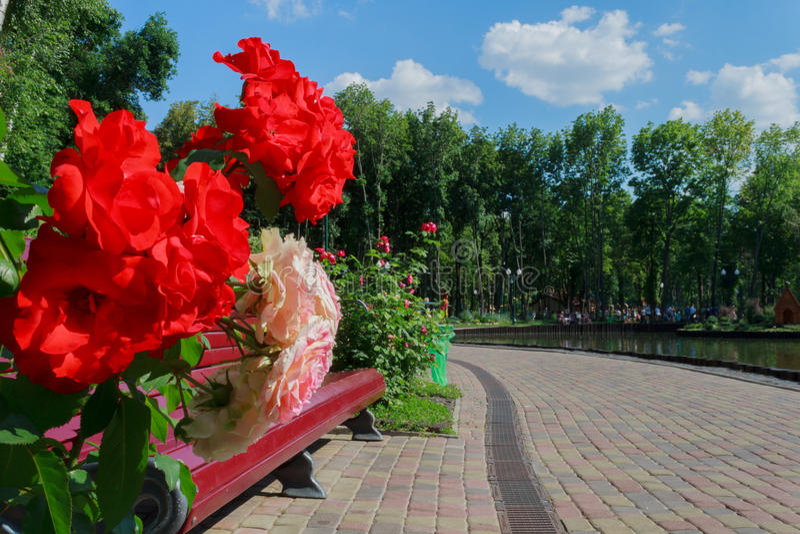 Landschap in een stadspark royalty-vrije stock afbeelding