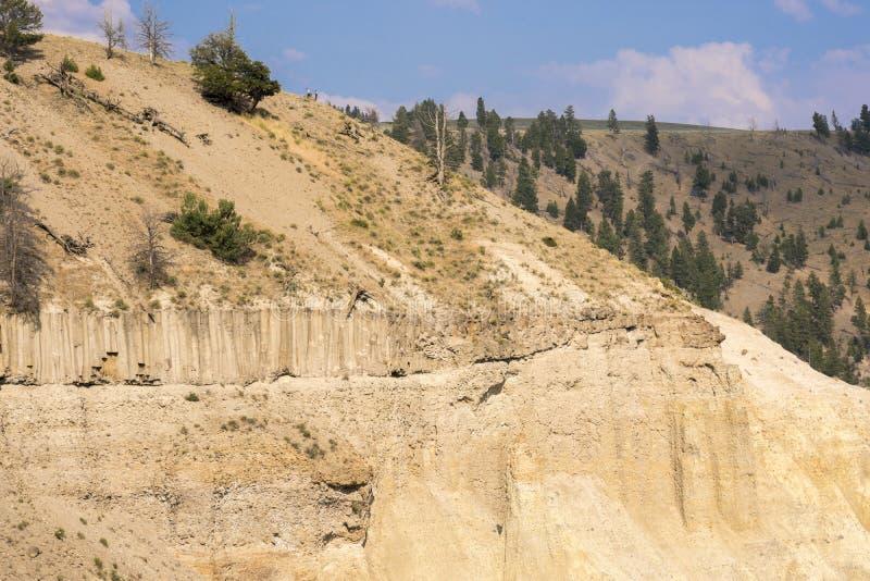 Landschap en bomen bij Towr-Daling van Lamar Valley in het Nationale Park van Yellowstone royalty-vrije stock foto's