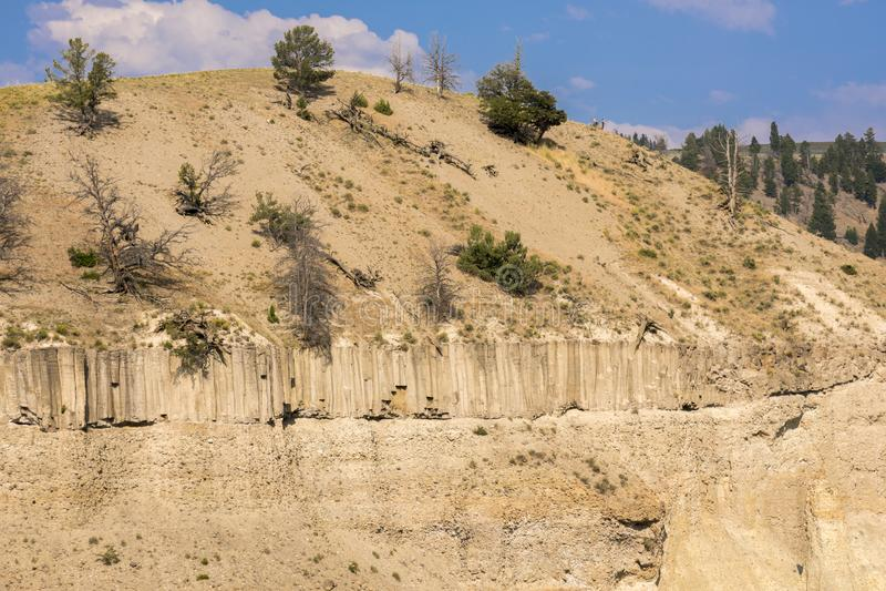 Landschap en bomen bij Towr-Daling van Lamar Valley in het Nationale Park van Yellowstone royalty-vrije stock afbeeldingen