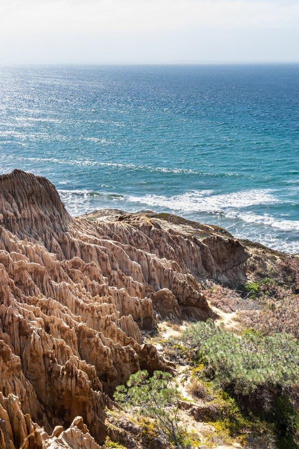 Landschap en strandmening van Torrey Pines State Reserve en Strand in San Diego, Californië royalty-vrije stock foto's