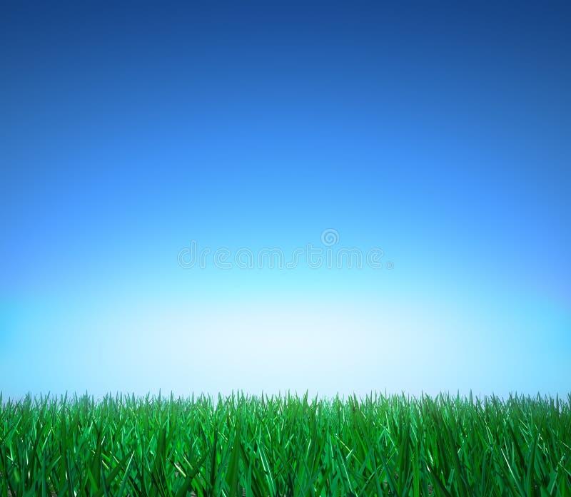 Landschap: groen gras, duidelijke blauwe hemel royalty-vrije illustratie