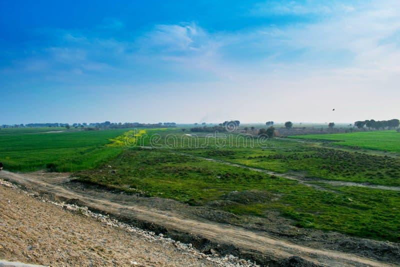 Landschap, groene gebieden met blauwe hemel stock foto's