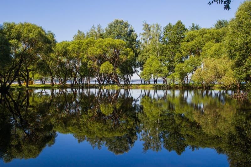 Landschap, heldere dag Bomen, water, heldere hemel royalty-vrije stock fotografie