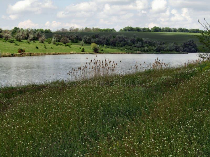 Landschap, hemel, wolken, meer, gras en bomen royalty-vrije stock afbeeldingen