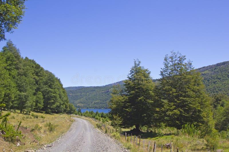 Landschap in het Nationale Park Tolhuaca stock foto