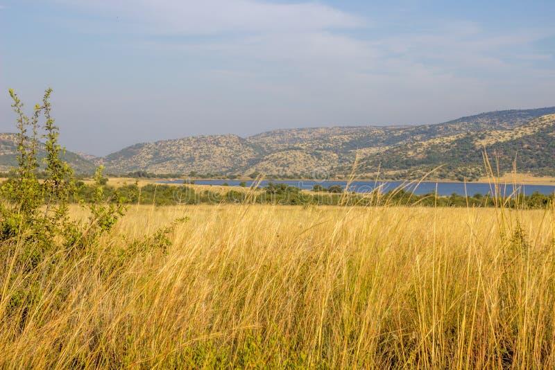 Landschap in het Nationale Park van Pilanesberg royalty-vrije stock afbeelding