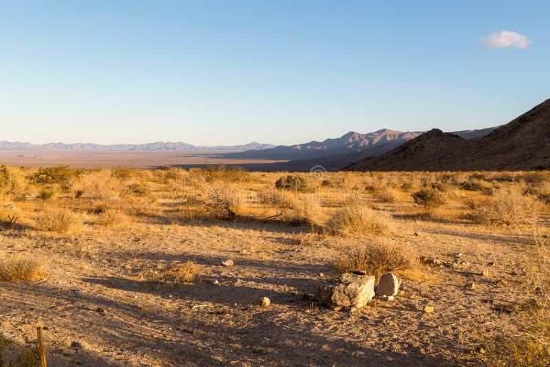 Landschap in Joshua Tree royalty-vrije stock foto