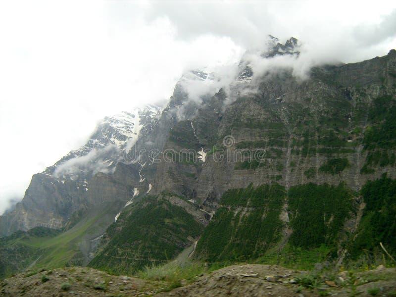 Landschap in ladakh-5 stock foto