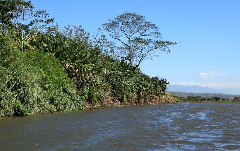 Landschap langs de Tarcoles-Rivier stock foto's