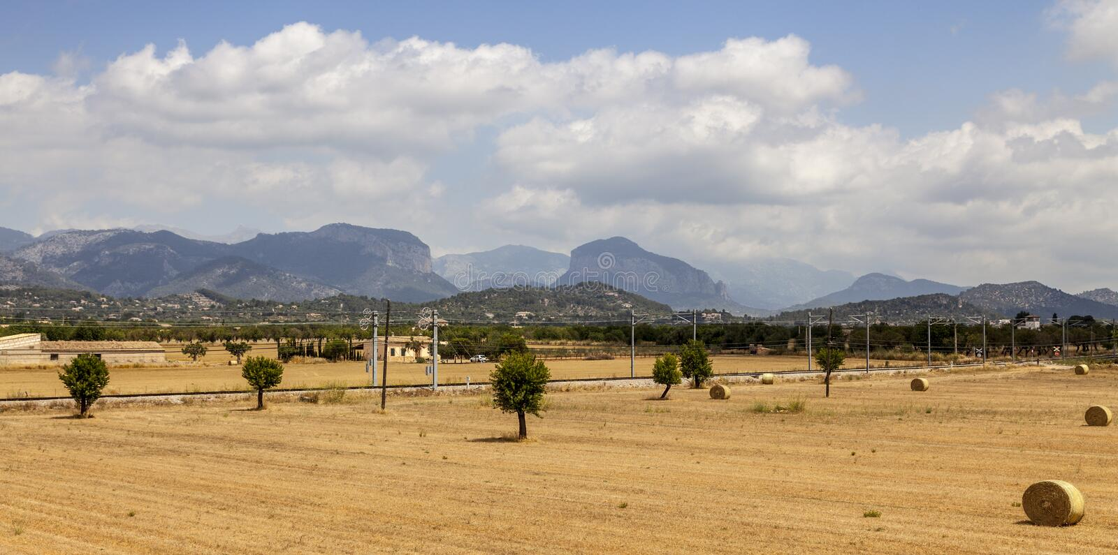 Landschap in Mallorca stock afbeeldingen