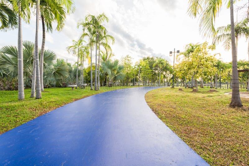 Landschap met blauw joggingspoor bij groen park stock foto