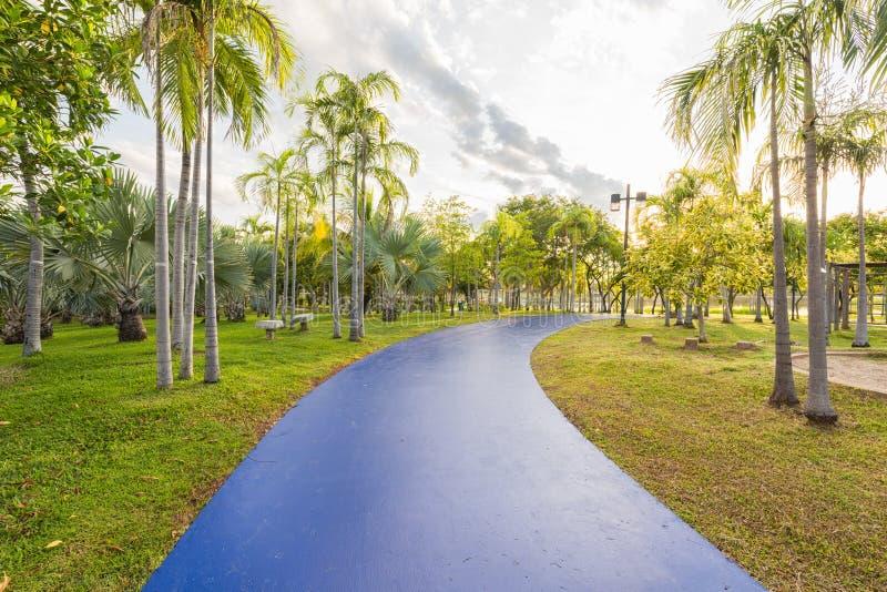 Landschap met blauw joggingspoor bij groen park stock foto's