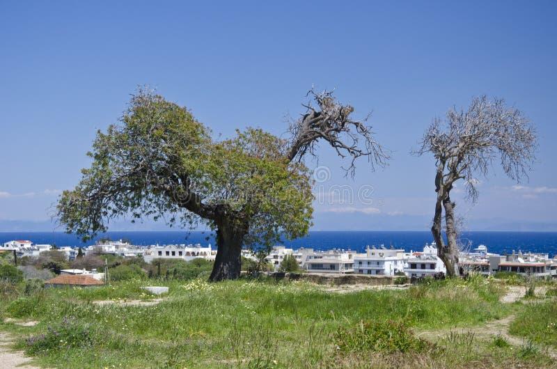 Landschap met bomen en gebouwen in Rodes-eiland stock afbeelding