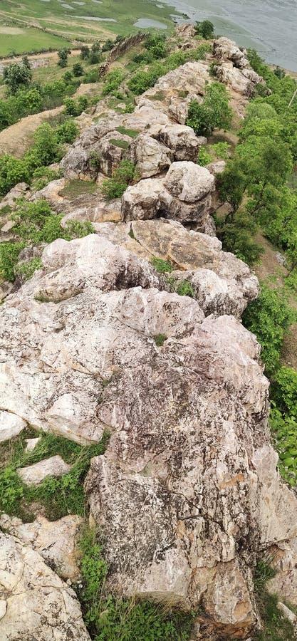Landschap met bos en berg, royalty-vrije stock afbeelding