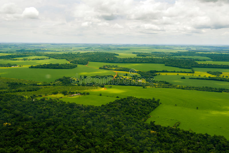 Landschap met bosgebieden met landbouwbedrijven stock foto's
