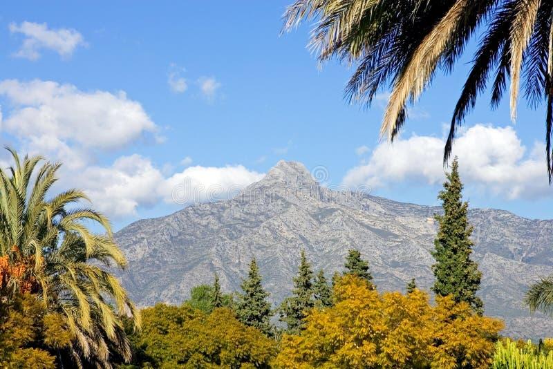 Landschap met de berg van La Concha in Marbella royalty-vrije stock foto's