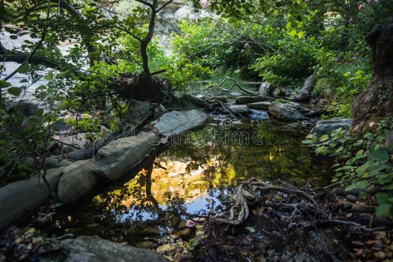 Landschap met de rivier en bezinning in water op het eiland o royalty-vrije stock afbeelding