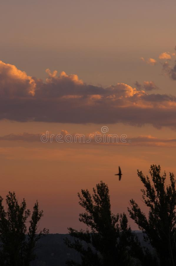Landschap met dramatische lichte mooie gouden zonsondergang met verzadigde hemel en wolken, vreedzame aard rustige achtergrond stock foto