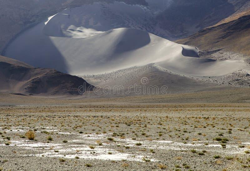 Landschap met duin bij de Puna de Atacama, Argentinië stock foto's