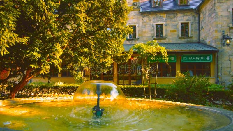 Landschap met een mooie fontein in Warshau, Polen - Image2019 royalty-vrije stock afbeelding