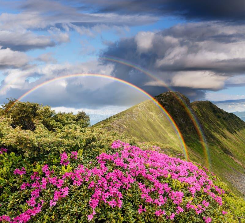 Landschap met een regenboog in de bergen royalty-vrije stock afbeelding