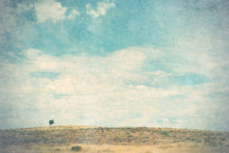 Landschap met eenzame boom royalty-vrije stock foto