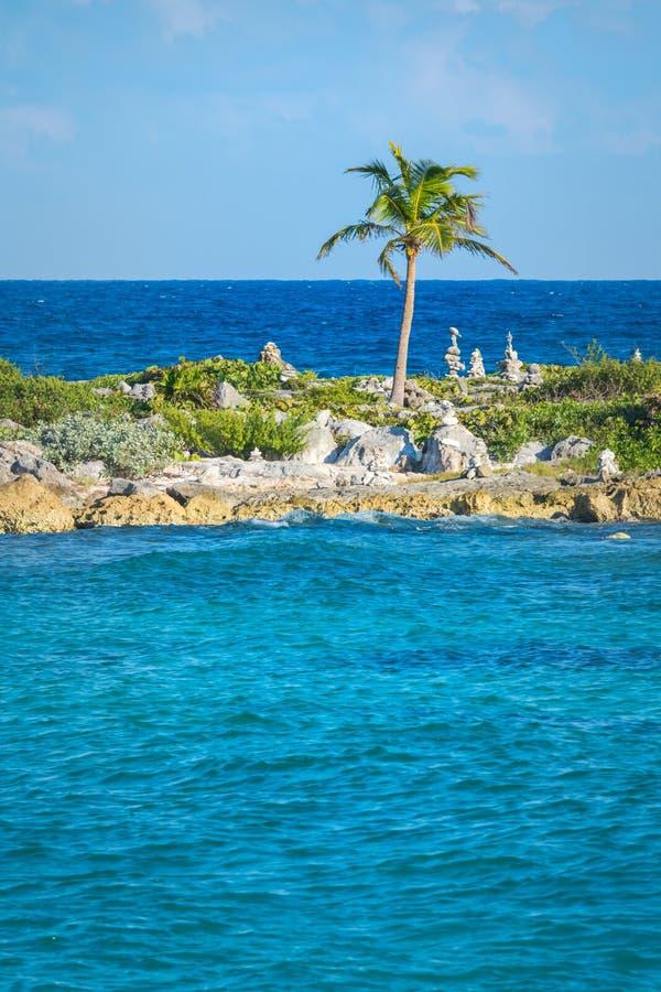 Landschap met evenwichtige rotsen, stenen naast een palm op een rotsachtige koraalpijler Turquois blauw Caraïbisch zeewater Rivie royalty-vrije stock afbeeldingen
