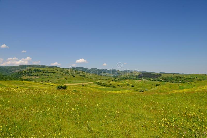 Landschap met fileds van gele bloemen, heuvels en blauwe hemel stock foto's