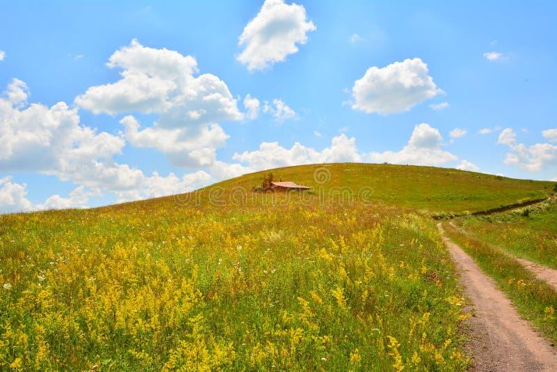 Landschap met gebied van bloemen, buitenhuis en landweg. stock fotografie