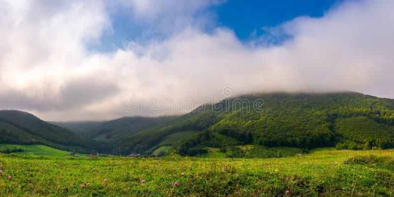 Landschap met gebieden en bos op helling stock foto
