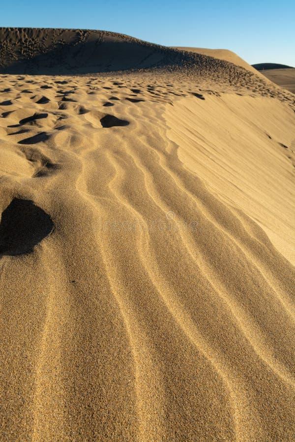 Landschap met gele zandige duinen van Maspalomas en de blauwe Atlantische Oceaan, Gran Canaria, Spanje royalty-vrije stock foto