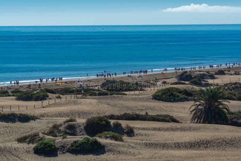 Landschap met gele zandige duinen van Maspalomas en strand in Playa des Ingles, Gran Canaria, Spanje royalty-vrije stock foto