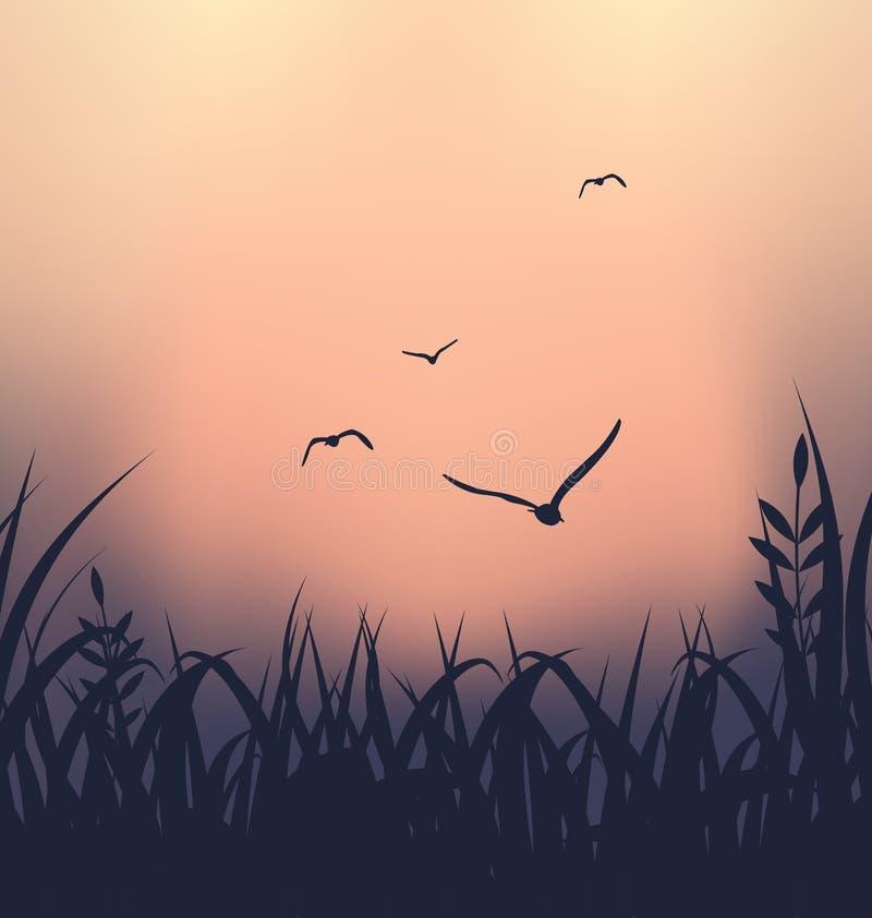 Landschap met gras en vliegende zeemeeuwen