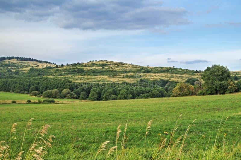Landschap met groene die gebieden en heuvels met bladbomen worden gevoerd stock afbeelding