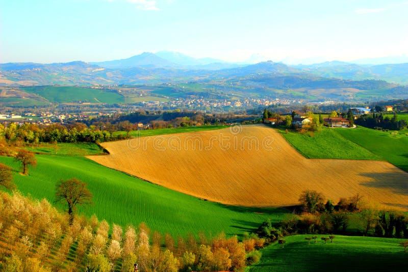 Landschap met groene en gele gebieden onder de blauwe hemel stock fotografie