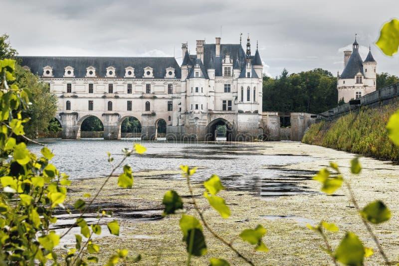 Landschap met het Chenonceau-kasteel in water met veel groene al royalty-vrije stock afbeelding
