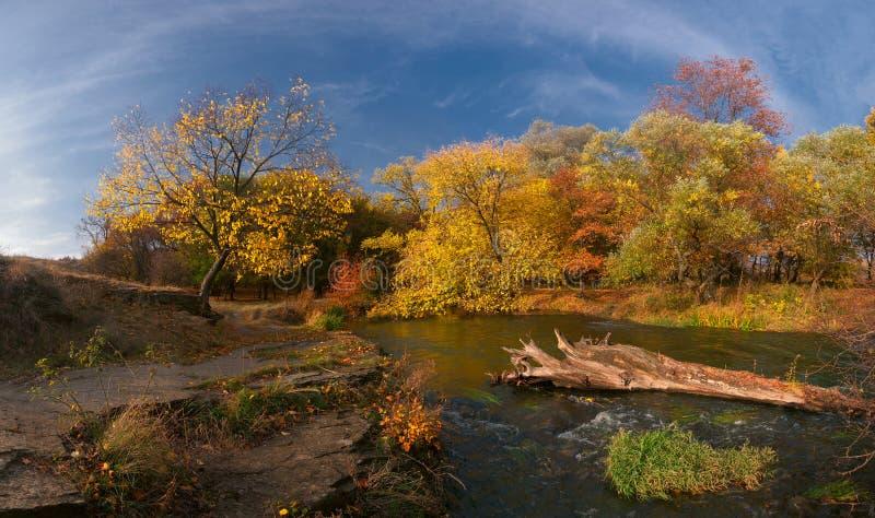 Landschap met houten rivier stock fotografie