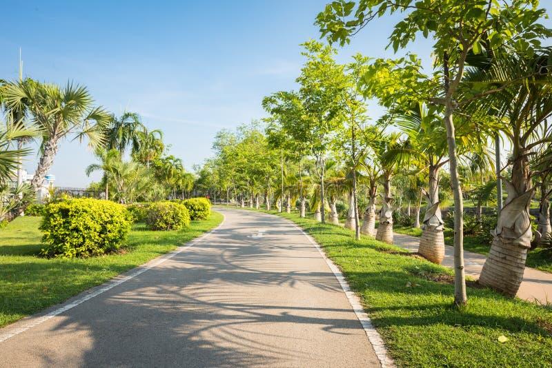 Landschap met joggingspoor bij groen park royalty-vrije stock foto