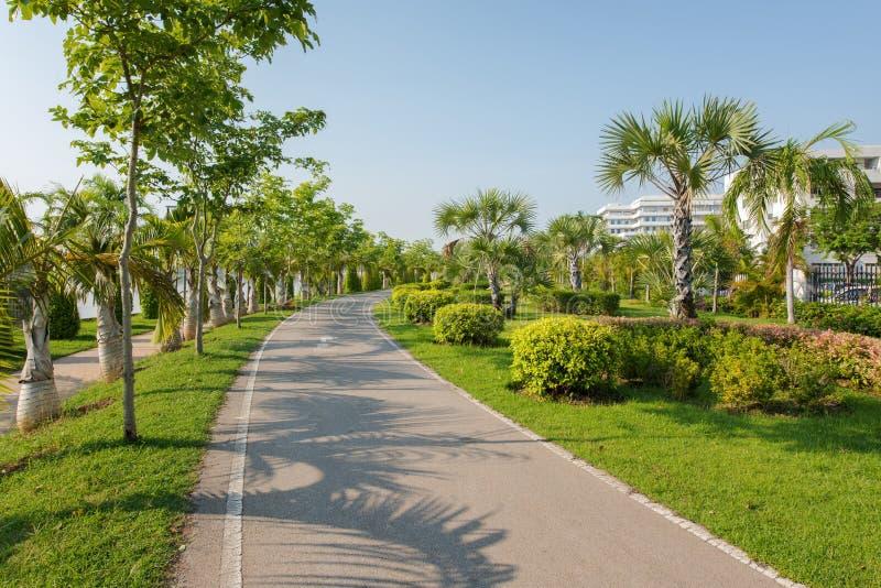 Landschap met joggingspoor bij groene parktuin stock afbeeldingen