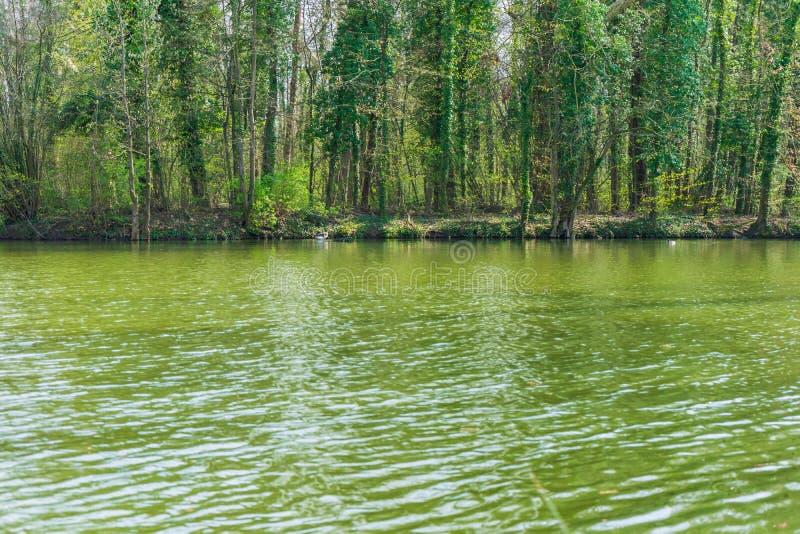 Landschap met meer en eiland royalty-vrije stock fotografie