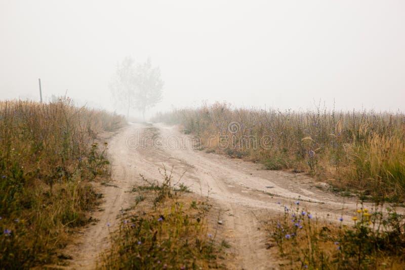 Landschap met mist. royalty-vrije stock afbeelding