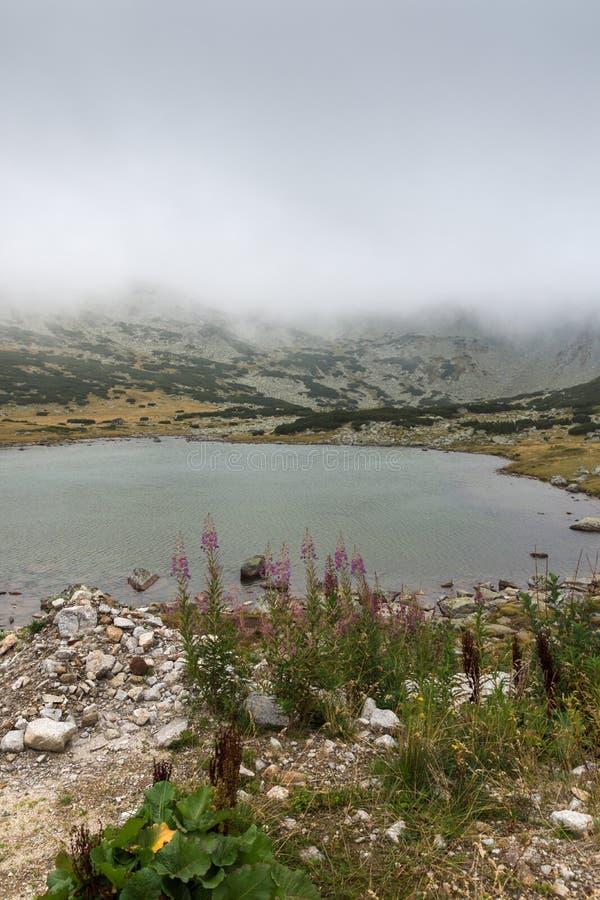 Landschap met mist over Musalenski-meren, Rila-berg, Bulgarije stock foto's