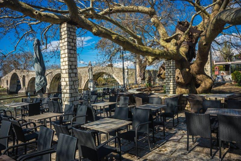 Landschap met reuzeboom dichtbij middeleeuwse brug over rivier Arahthos in Arta, Griekenland royalty-vrije stock afbeelding