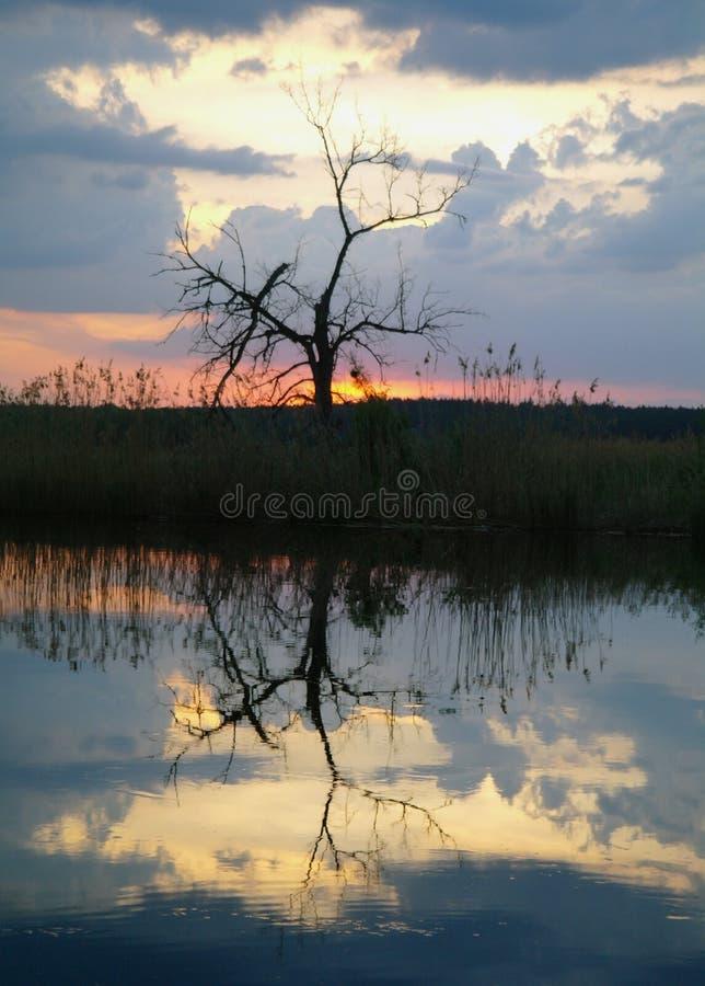 Landschap met rivier in vroege avondtijd royalty-vrije stock fotografie