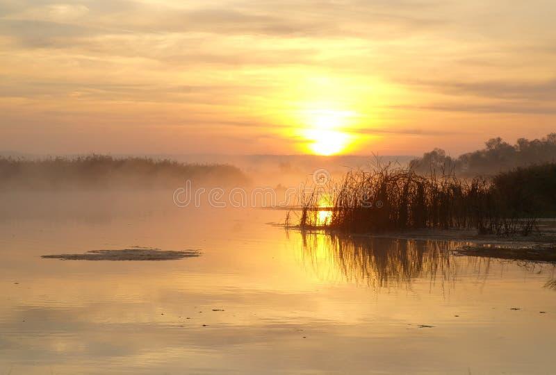 Landschap met rivier in vroege ochtendtijd stock fotografie