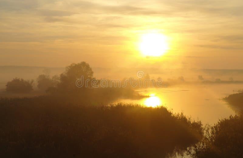 Landschap met rivier in vroege ochtendtijd stock afbeeldingen