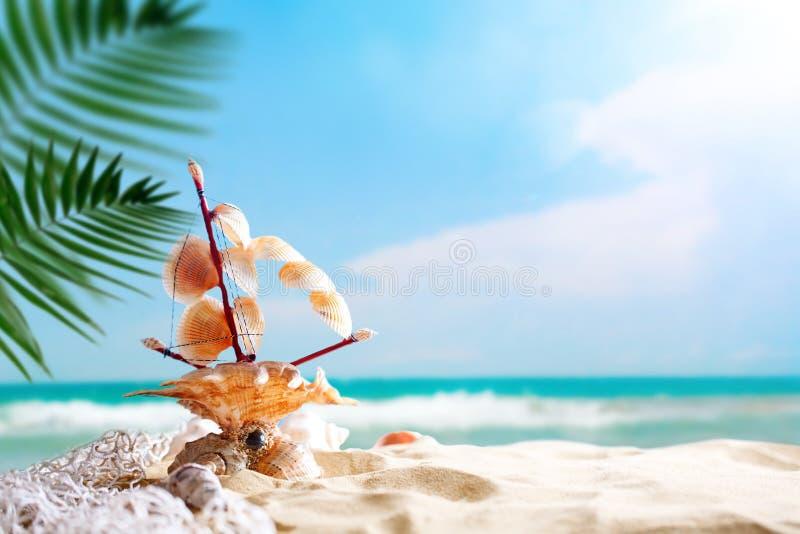 Landschap met shells op tropisch strand Rust op het strand Reis Achtergrond met exemplaarruimte stock afbeelding