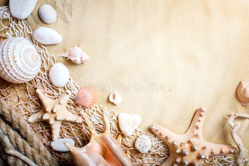 Landschap met shells op tropisch strand Rust op het strand Reis Achtergrond met exemplaarruimte stock afbeeldingen